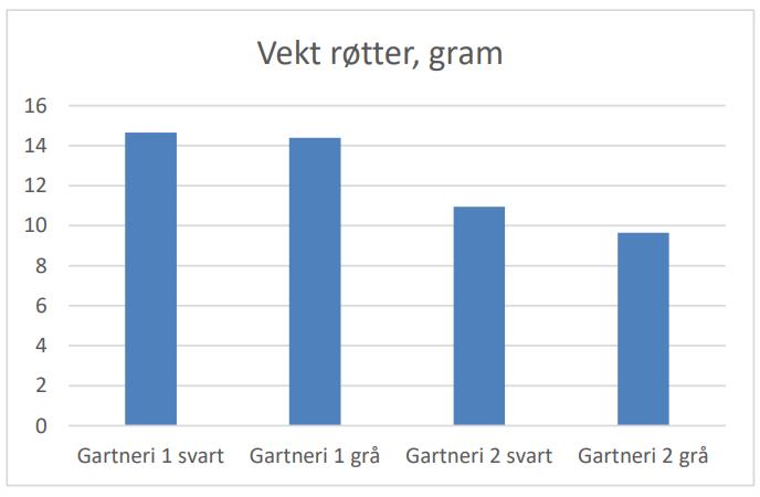 Figur 2 Figuren viser vekt av rotmassen til planter dyrket i svare og gra potter